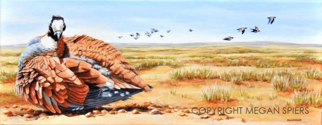 Desert Flight Copyright Megan Spiers