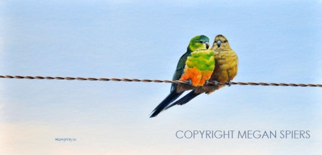 Love on the Line Copyright Megan Spiers